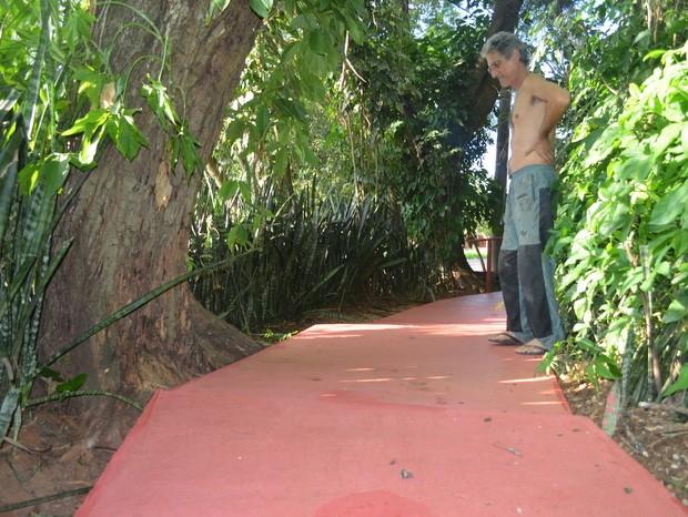 Para preservar raízes, restaurador de Piracicaba fez calçada ecológica (Foto: Thomaz Fernandes/G1)