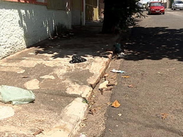 Sete gatos apareceram mortos no Jardim Bela Vista (Foto: Reprodução / TV TEM)