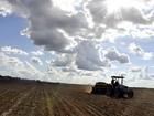 Argentina revisa área da safra de soja para ciclo 2013/14