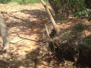 Nascente secou na propriedade do produtor rural (Foto: Cristiano Sarley Flores da Mata/Divulgação)