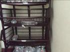 Hospital no interior de São Paulo funciona sem materiais básicos