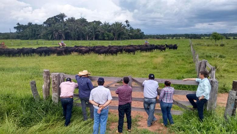 caravana-produtividade (Foto: Divulgação/Caravana da Produtividade)