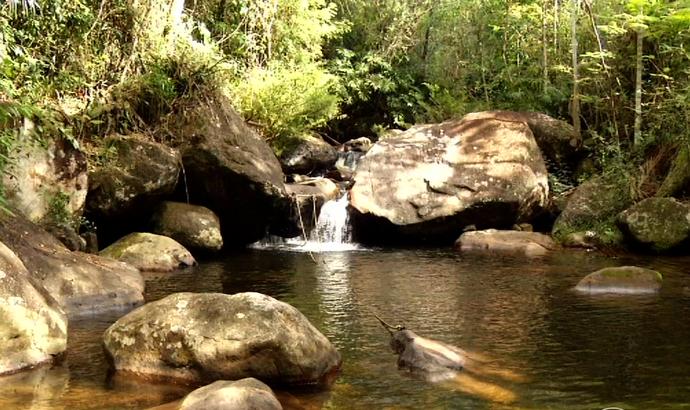 Penedo recebe 9ª edição da Caminhada da Natureza neste fim de semana (Foto: Reprodução/TV Rio Sul)