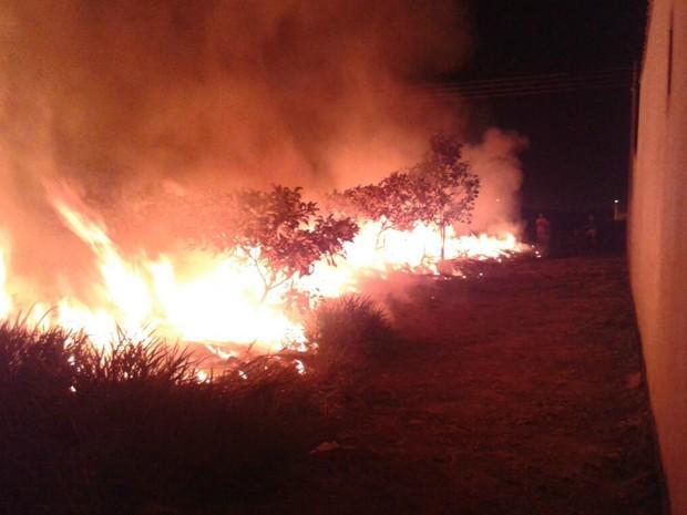 Incêndio em Vilhena (Foto: Corpo de Bombeiros/Divulgação)