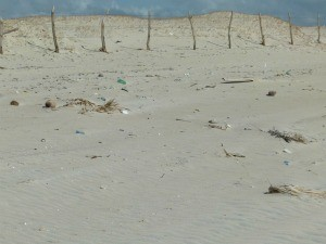 Maior dos resíduos são palhas e garrafas plásticas (Foto: Projeto Praia Limpa/Divulgação)
