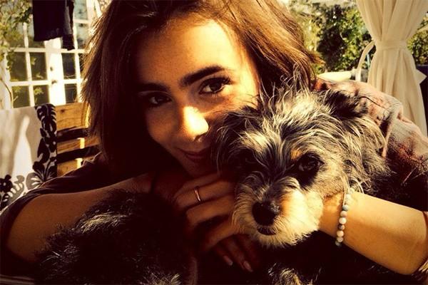 Isso que é amizade! Lily Collins gosta tanto do cachorrinho Nugget, de Kevin Zegers, seu companheiro de cena de 'Instrumentos Mortais: Cidade dos Ossos' que até já se voluntariou para ficar de babá do cãozinho. (Foto: Reprodução/Instagram)