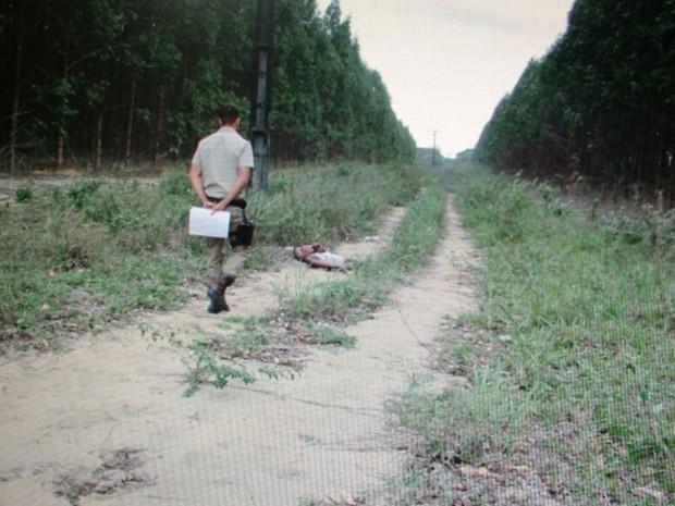 Corpo foi achado por moradores em plantação de eucaliptos (Foto: Reprodução/TV Santa Cruz)