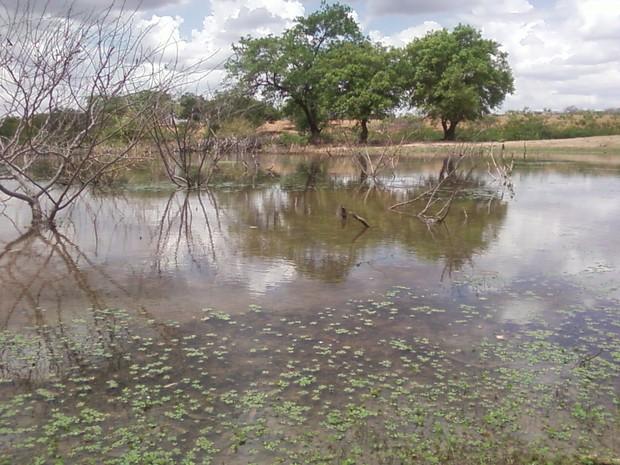 Reservatório de água cheio após as chuvas (Foto: Maria Lima/G1 Petrolina)