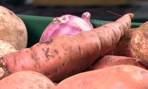 Batata doce apresenta manchas escuras após cozimento