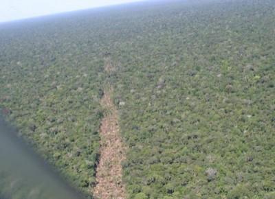 amazonia (Foto: Agência Brasil)