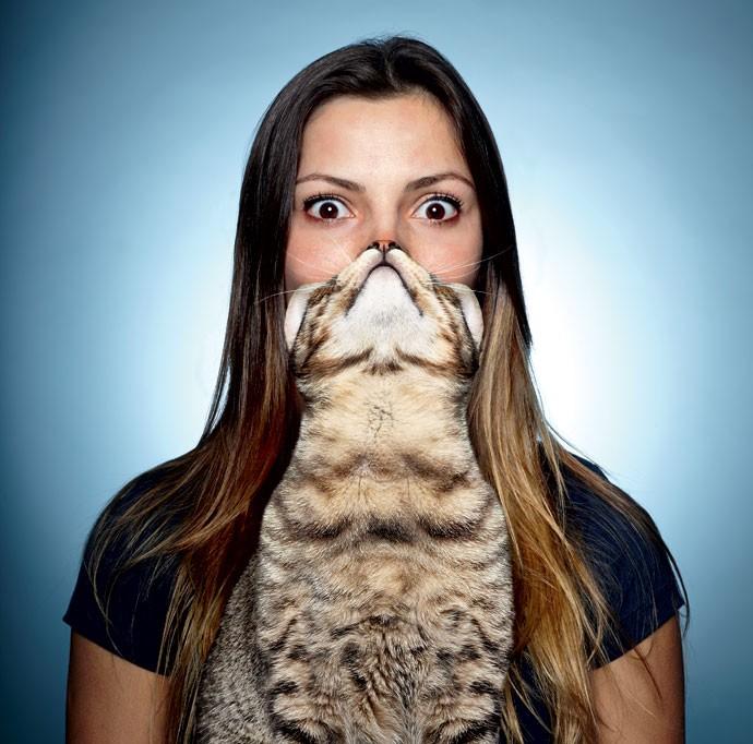 BARBA DE GATO > A primeira ocorrência do catbearding é uma foto postada pelo tumblr Catsasters em julho de 2011. Dois dias depois, apareceu a rede social Reddit e alcançou sites como o Buzzfeed e o Huffington Post. (Foto: Victor Affaro)