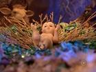 Rapaz soma 80 presépios de 7 países após ganhar presente de Natal da avó