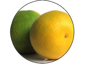 Frutas Cítricas (Foto: Banco de Imagens)