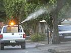 Saúde de Foz do Iguaçu confirma primeiro caso de febre chikungunya