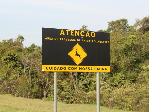 placa (Foto: Bruno Fontes/G1)
