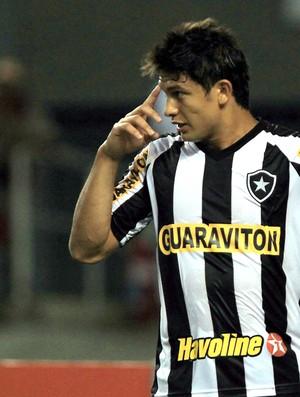 Elkeson gol Botafogo (Foto: Cezar Loureiro / Agência o Globo)