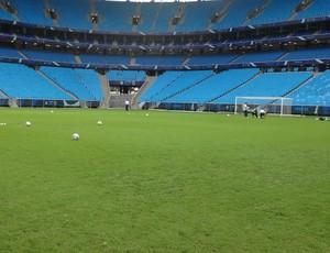 Grama do novo estádio cresceu a ponto de tapar a areia e buracos (Foto: Hector Werlang/Globoesporte.com)