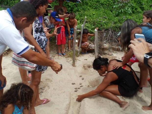 Tartarugas foram soltas por voluntários e ação acompanhada pela comunidade (Foto: Projeto Biomade/Divulgação)