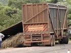 Bitrem tomba, cai em ribanceira e motorista morre em estrada vicinal
