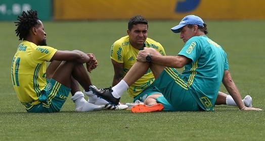 VOLTANDO (Cesar Greco/Ag Palmeiras/Divulgação)