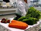 'Carga tóxica para organismo', diz especialista sobre agrotóxicos