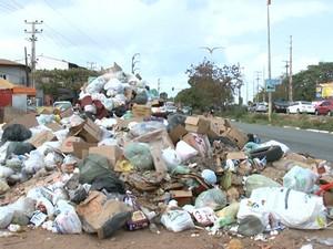 Prefeitura de São Luís adia mutirão contra a dengue em São Luís (Foto: Reprodução/TV Mirante)