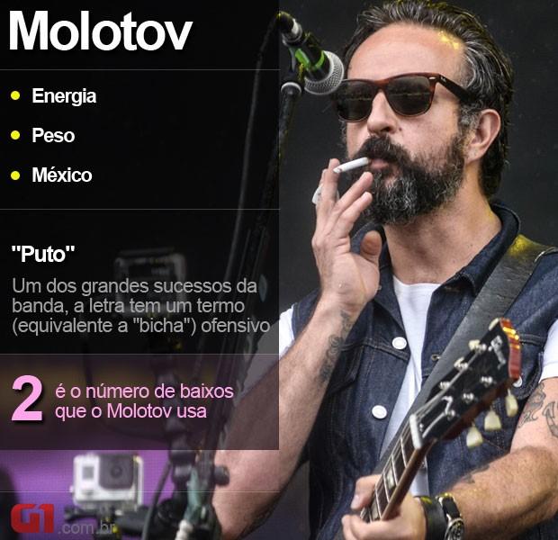 Lollapalooza Molotov - resumo (Foto: Marcelo Brandt/G1)