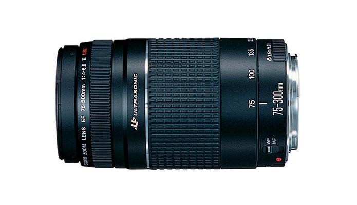 Lente zoom telefoto EF 75-300 mm f/4-5.6 (Foto: Divulgação/Canon)