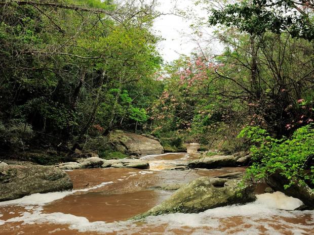 Cheia no Rio Brandão, que corta a Floresta da Cicuta (Foto: Arquivo/ICMBio-ARIE Floresta da Cicuta)