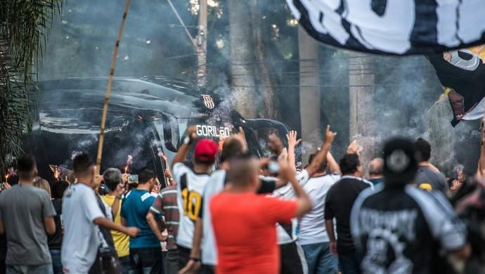 Torcida Ponte Preta (Foto: Fabio Leoni/ PontePress)