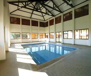 CT Traffic piscina (Foto: Site Oficial)