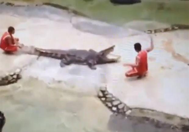 Caso ocorreu em um parque de Bangcoc, na Tailândia (Foto: Reprodução/Live Leak/smithers360)