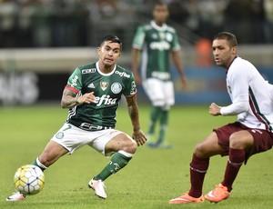 Dudu Palmeiras x Fluminense (Foto: Mauro Horita)