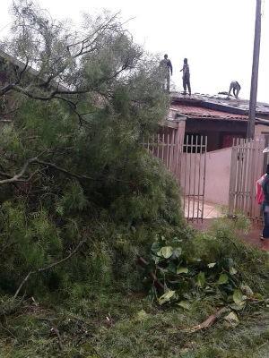 Segundo a Defesa Civil, 37 residências foram destelhadas  (Foto: Grupo Amigos da Notícia/ Arquivo pessoal)