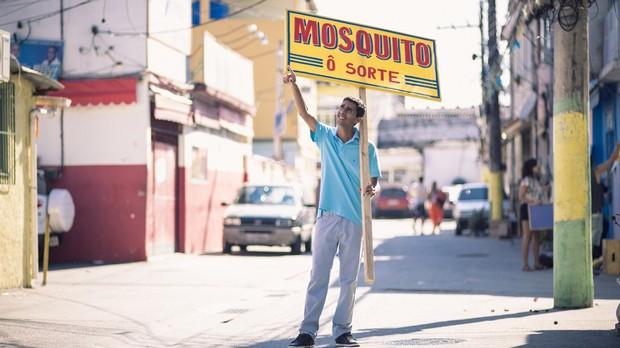 Mosquito (Foto: Fernando Young)
