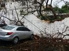 Em Manaus, árvore cai e atinge carros em estacionamento de hospital