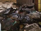 Alunos ficam sem aula após suspeita de incêndio criminoso em biblioteca