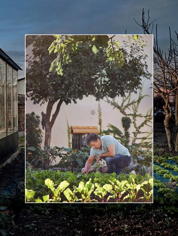 Chefs renomados investem em hortas para novas experiências gastronômicas (Foto: divulgação)