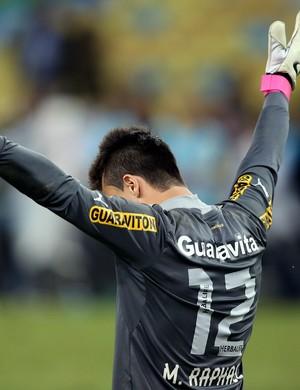 Milton Raphael Botafogo (Foto: Vitor Silva/SSPress/Botafogo)