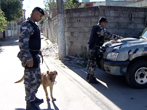 Policiais contaram com o apoio de cães farejadores. (Foto: Reprodução/TV Gazeta)