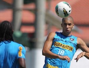 Doria treino Botafogo (Foto: Jorge William / Agência O Globo)