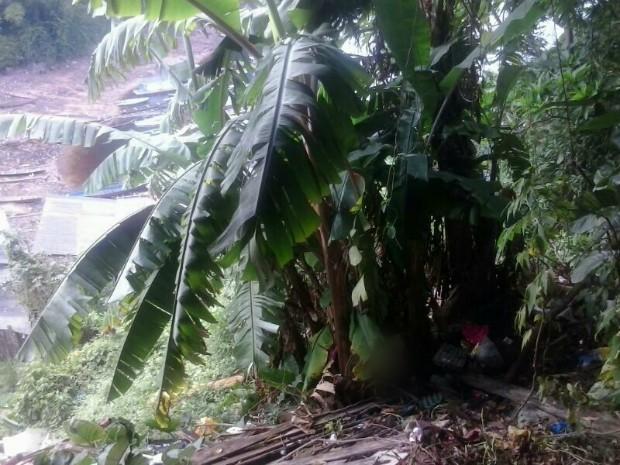 No local, havia muito mato e lixo, segundo PM (Foto: Divulgação/Polícia Militar)