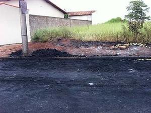 Ônibus coletivo é incendiado no Bairro Luizote em Uberlândia (Foto: Caroline Aleixo/G1)
