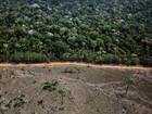 Expansão agrícola é a principal luta do Greenpeace no Amazonas