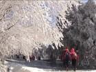 Frio deixa 85 mortos em Taiwan no fim de semana