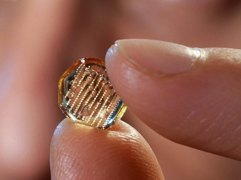 Adesivo que pode substituir as vacinas convencionais (Foto: Laboratório de Drug Delivery da Georgia Tech)