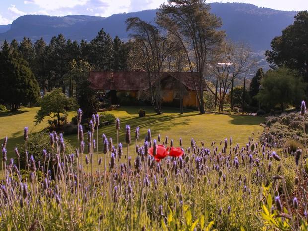 Le Jardin é inspirado em parques de lavanda da Europa e EUA (Foto: Divulgação/Prefeitura de Gramado)
