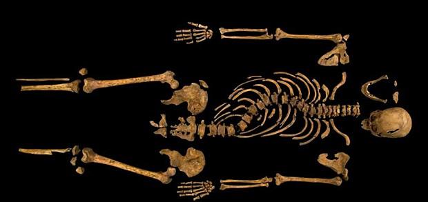 Esqueleto do rei Ricardo III foi encontrado praticamente intacto (Foto: Universidade de Leicester)