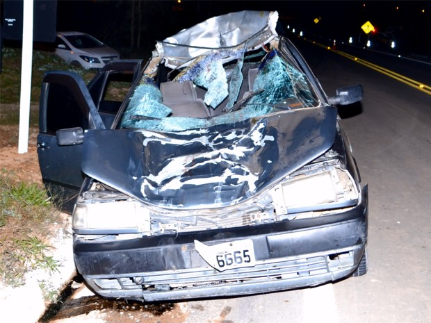 Animal solto na rodovia causa acidente em rodovia próximo a Itajubá (Foto: Luciano Lopes)