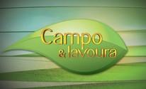 Confira os vídeos do Campo e Lavoura (Reprodução/RBS TV)